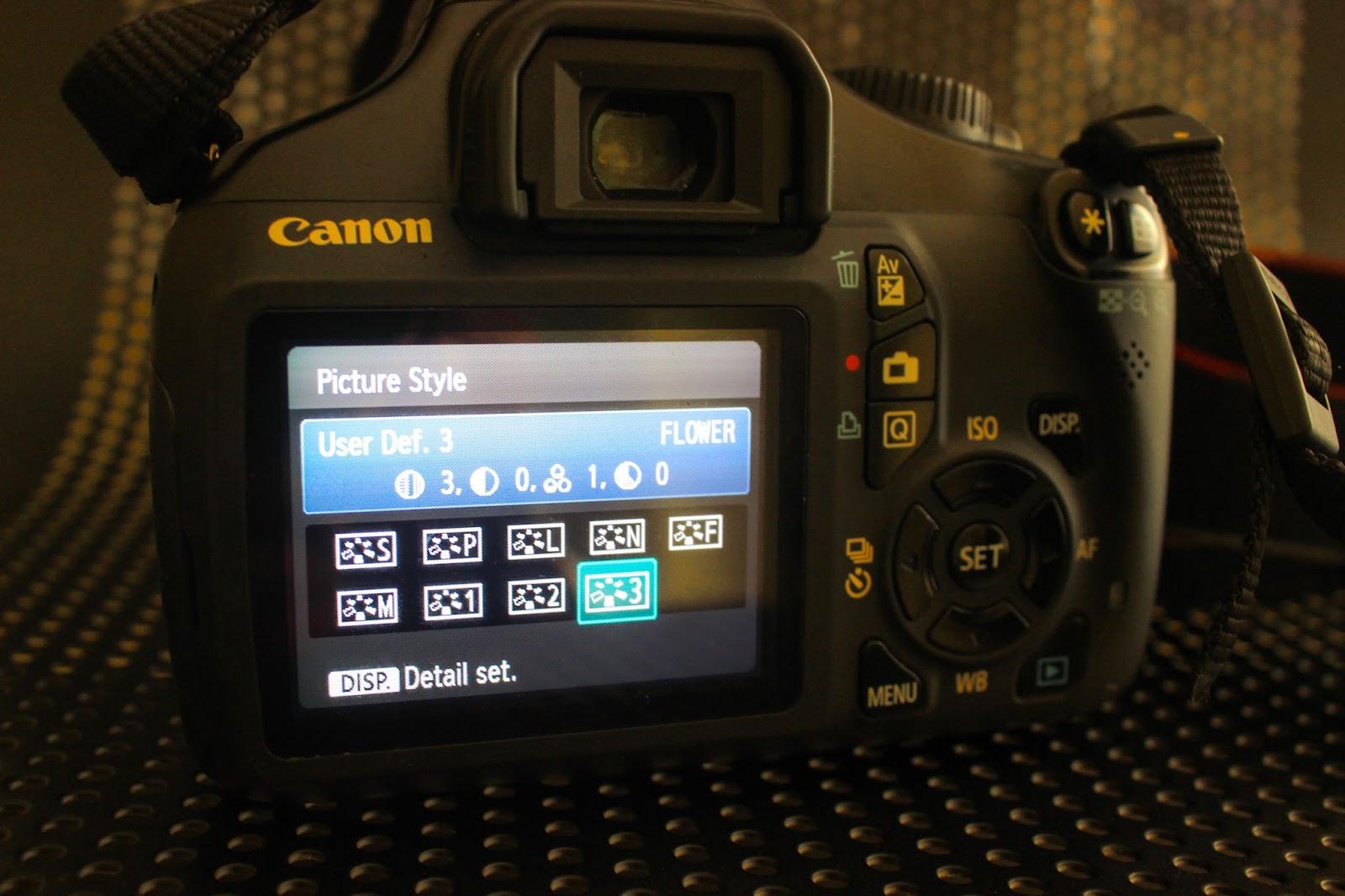 Cara Mengisi Picture Style Pada Kamera Dslr Canon Blog Banten Kamera