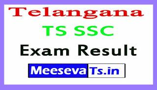 Telangana TS SSC Exam Results 2017