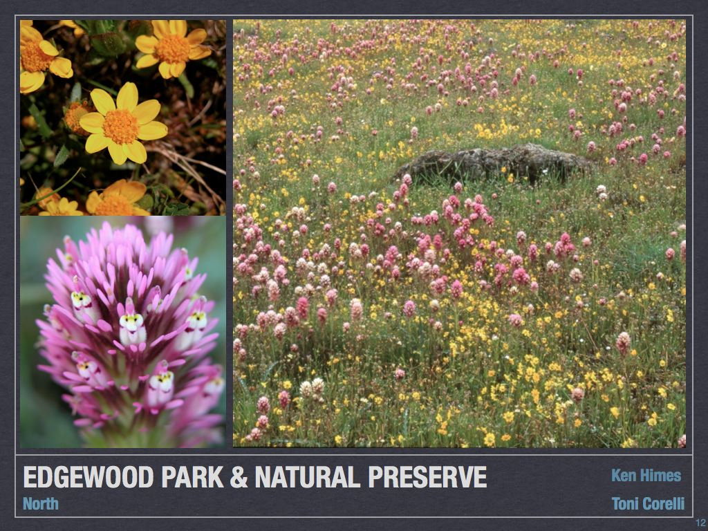 Edgewood Park And Natural Preserve