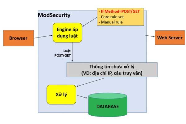 Cấu trúc chuẩn cho một bài thesis