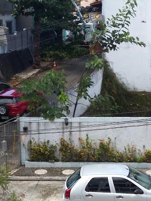 Coelba retira galhas de árvores que ameaçavam cair na Rua Maracás