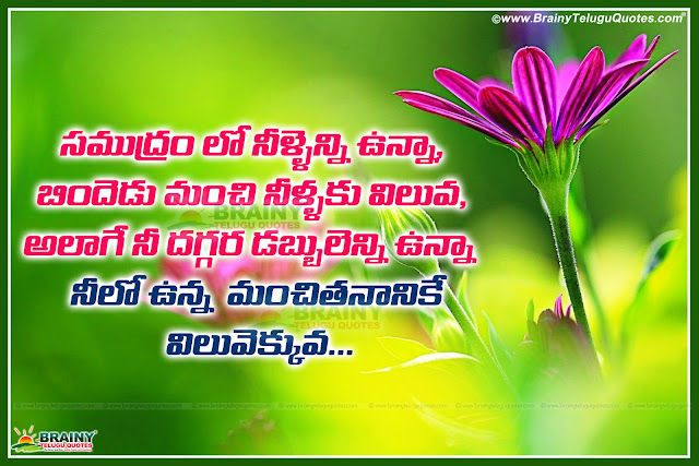 leadership quotes in telugu language with inspirational