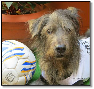Lotte und der Fußball