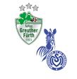 Greuther Fürth - MSV Duisburg