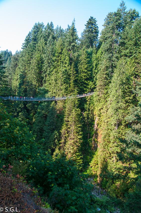 Puente colgante de Capilano. Visitando Vancouver
