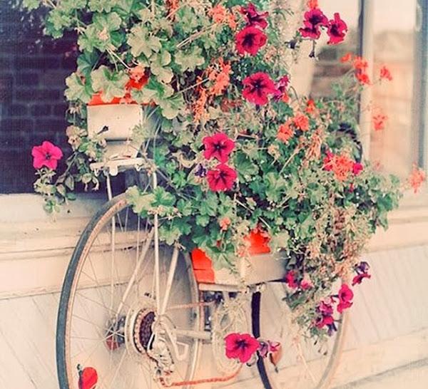 20 Maneras De Cómo Reciclar Las Ruedas De Tu Bicicleta: Geniales Ideas Para Reciclar Tu Vieja Bicicleta.