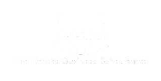 Black Raccoon Consulting