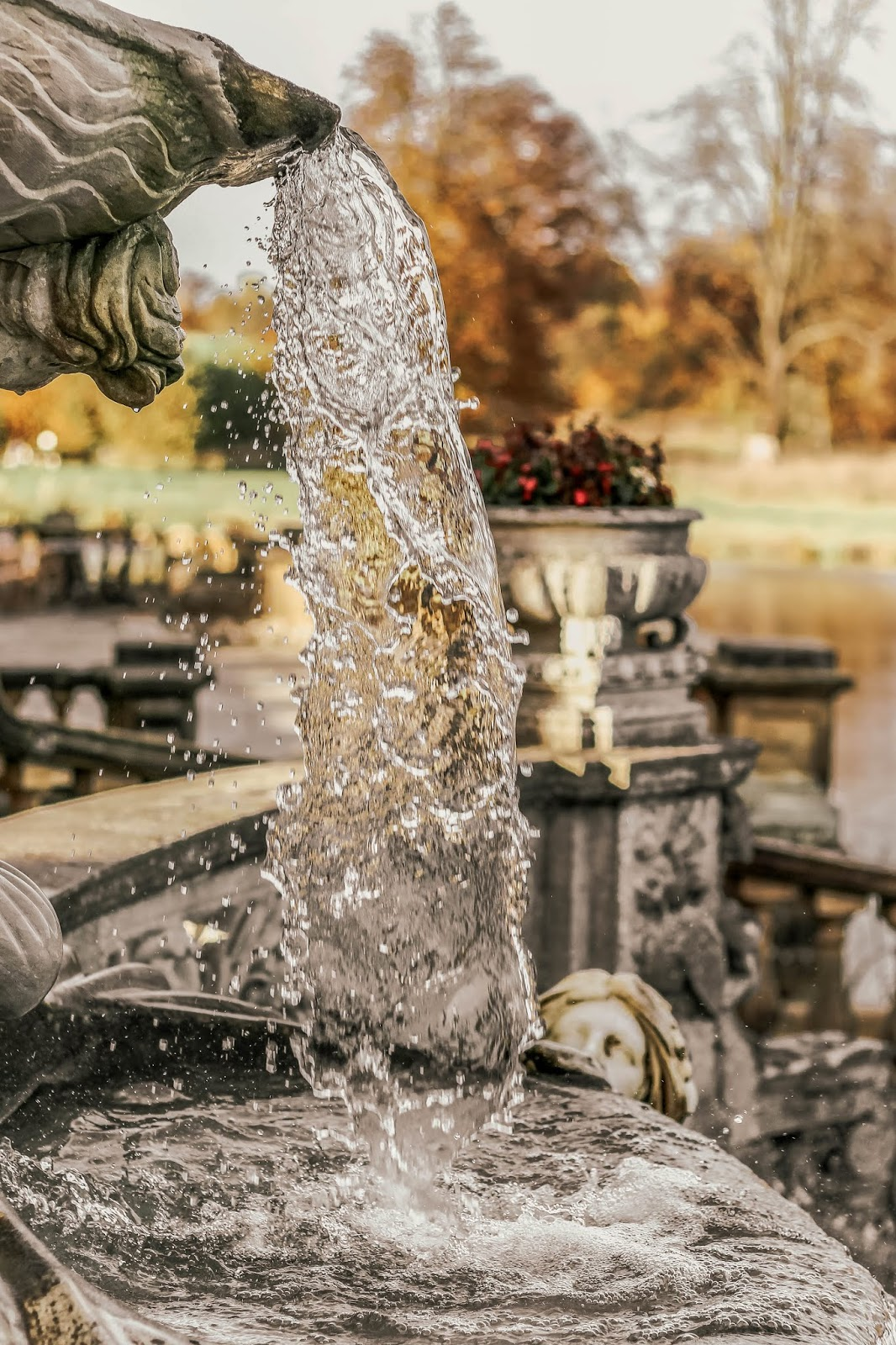 water pouring from a fountain in winter