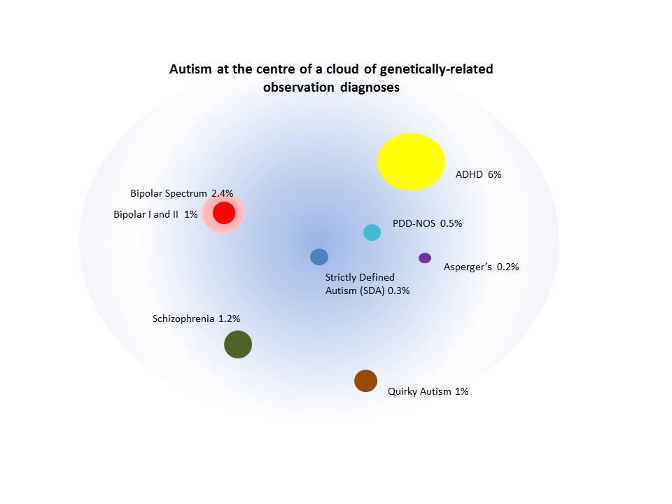 Epiphany Polygenic Disorders That Overlap Autism S