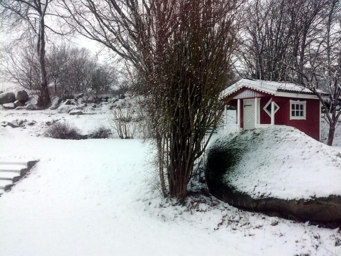 Giardino sotto la neve
