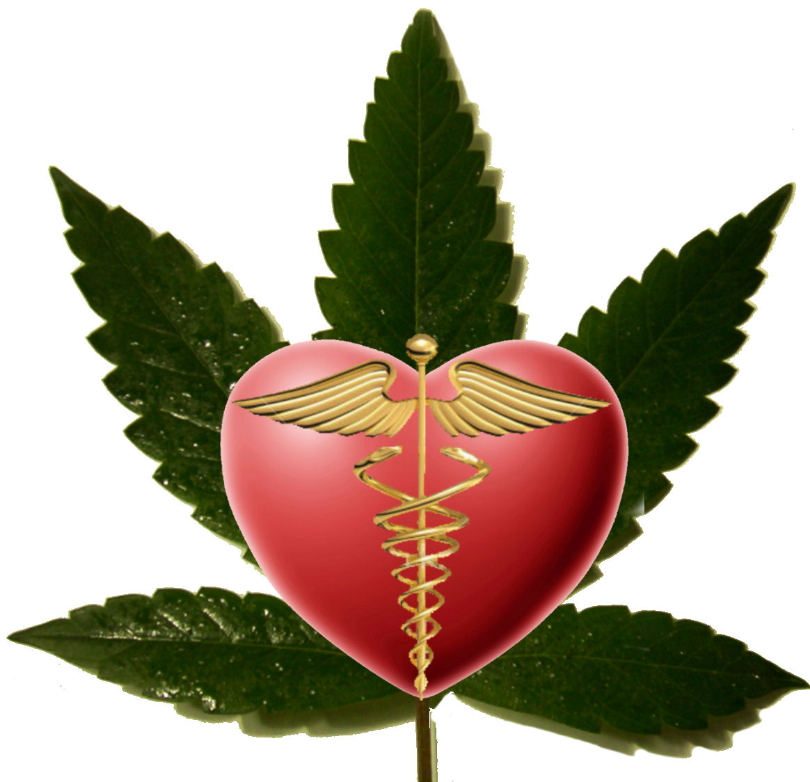 marijuana medical handbook pdf download