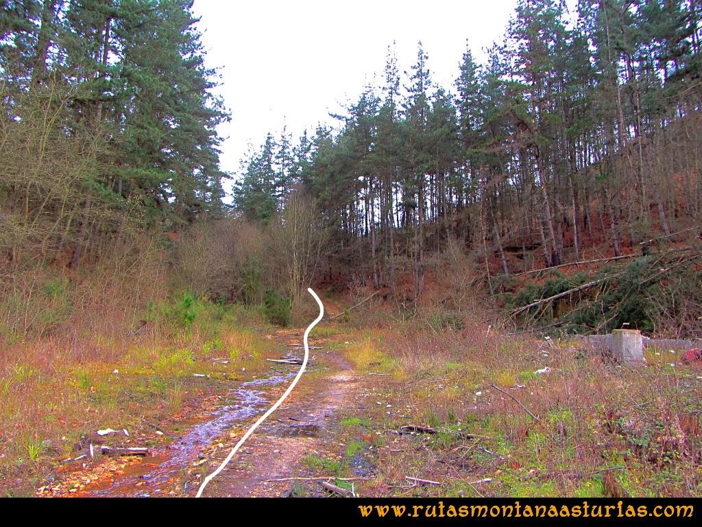 Rutas Montaña Asturias: Camino a Peña Escrita