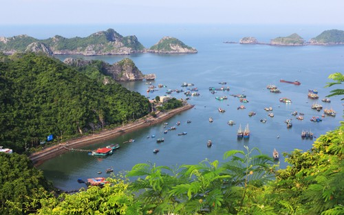 Tours from Hanoi to Cat Ba Island - Town & National Park
