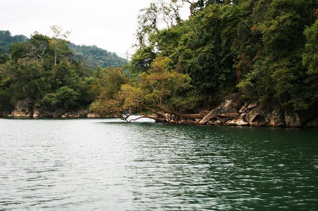 Natural scenery attracts visitors at Ba Be Lake