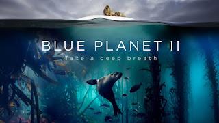 Blue Planet II Documentary - Full Episodes Online Free