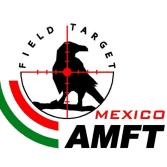 Diferencias entre el FT y el HFT
