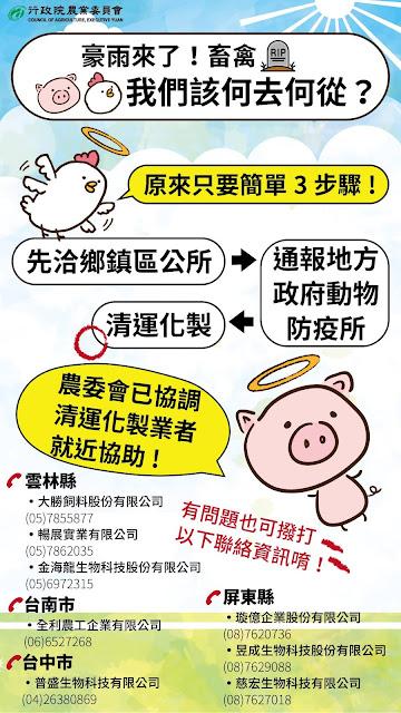 淹水 毛豬 淹死 香腸 加工 謠言