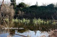 Nachal Poleg Natuurreservaat
