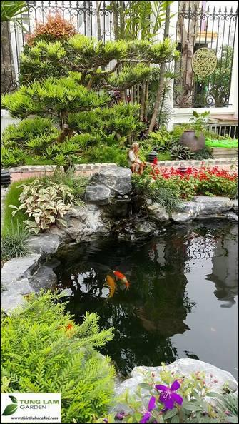 thiết kế hồ cá Koi mini đẹp, TungLam Garden, thi công hồ cá Koi chuyên nghiệp