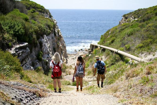 Tabbigai Gap Sydney Australia Coastal Walk
