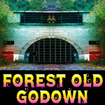 Games4King Forest Old Godown Escape Walkthrough
