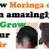 How to make moringa oil for hair: a DO IT YOURSELF(DIY) guide for making bald head hair regrowth oil