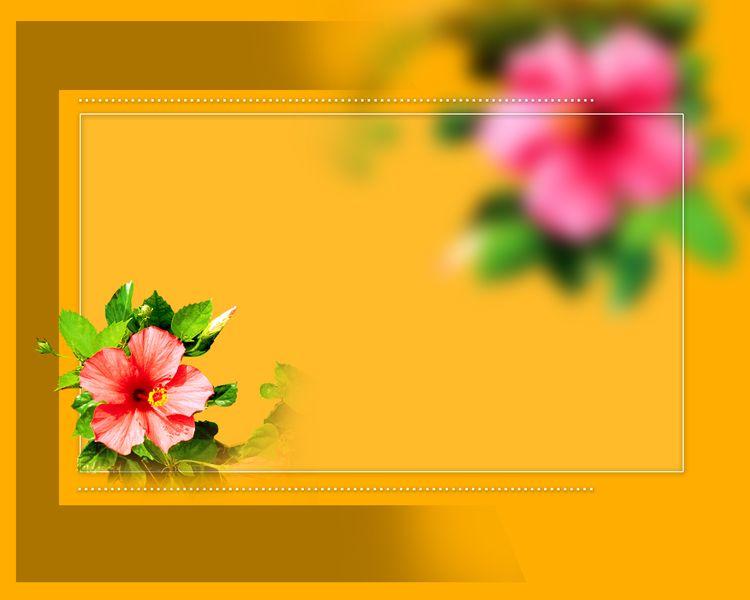 12x15 shubh vivah volume 2