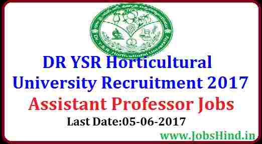 DR YSR Horticultural University Recruitment 2017