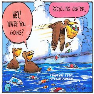 pelican plastic free cartoon