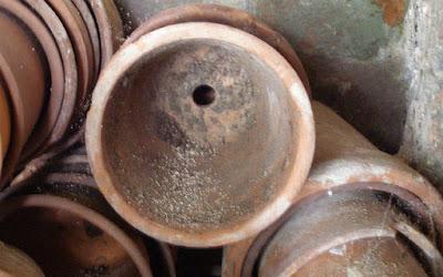 Dirty terracotta pots