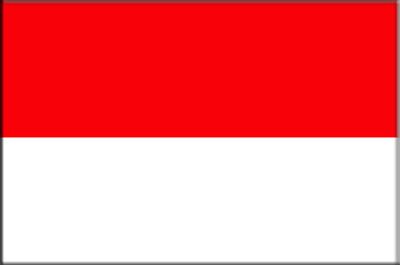Indonesian flag : red white