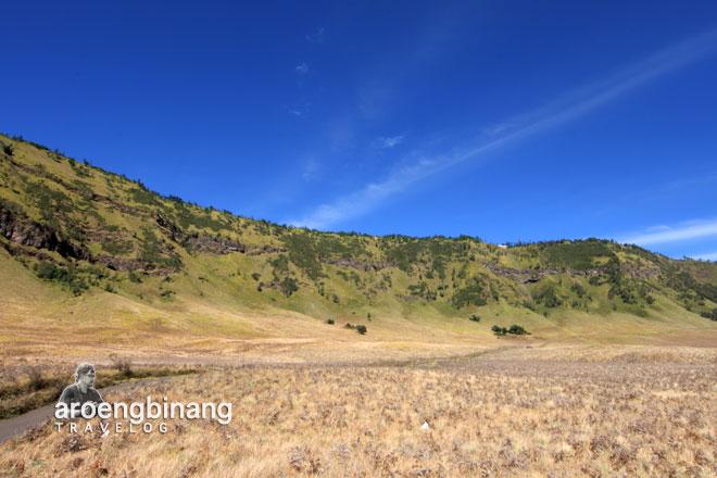 padang savana gunung bromo probolinggo