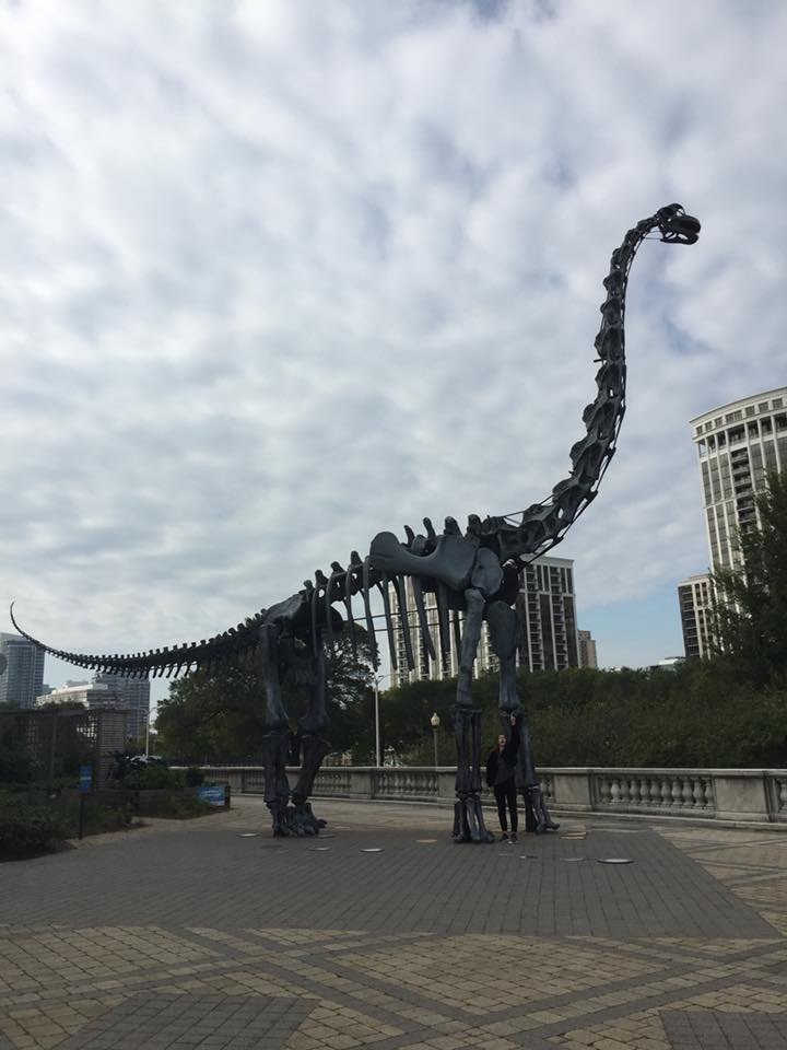 Me standing next to a huge dinosaur skeleton, outside the museum