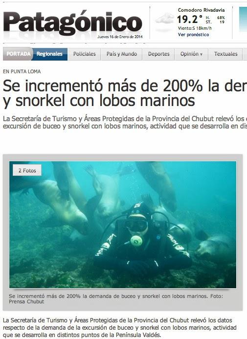 articulo sobre el buceo con lobos marinos en puerto madryn y puerto piramides