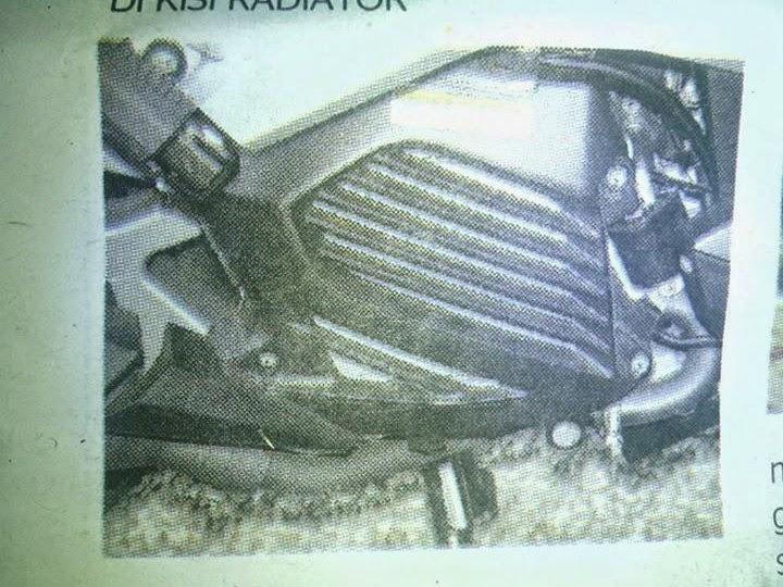 kisi radiator