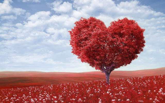 Beautiful  Red Heart Tree Hd Wallpaper