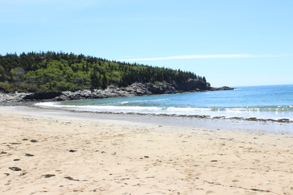 This sandy beach area is relaxing with green trees and blue water.
