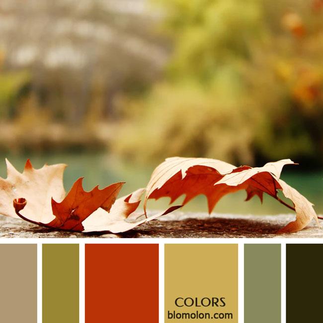 variedad_en_color_paletas_de_colores_36