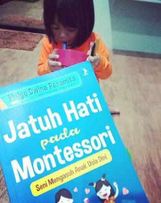 reviuw buku jatuh hati pada montessori