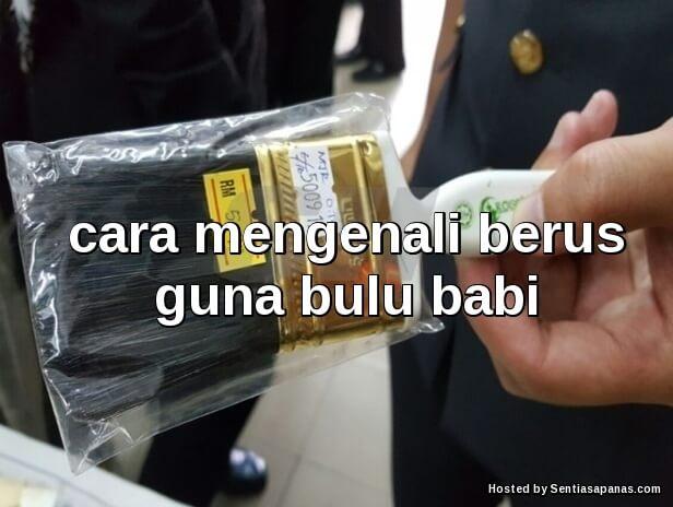 Berus