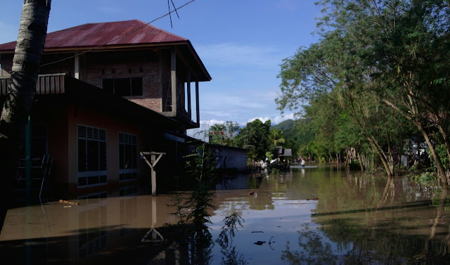 Ratusan Rumah Warga di Sepanjang Jalan Trans Sulawesi Terendam