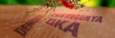 Síntomas Virus Zika