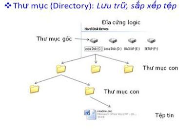 tinhoccoban.net - Hình biểu diễn cây thư mục
