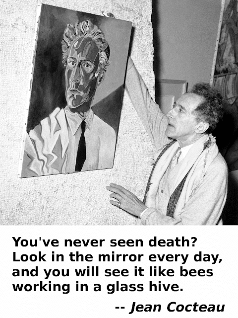 You've never seen death? Look in the mirror every day, and you will see it like bees working in a glass hive. -- Jean Cocteau