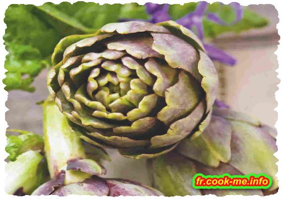 L'ARTICHAUT trésor du potager