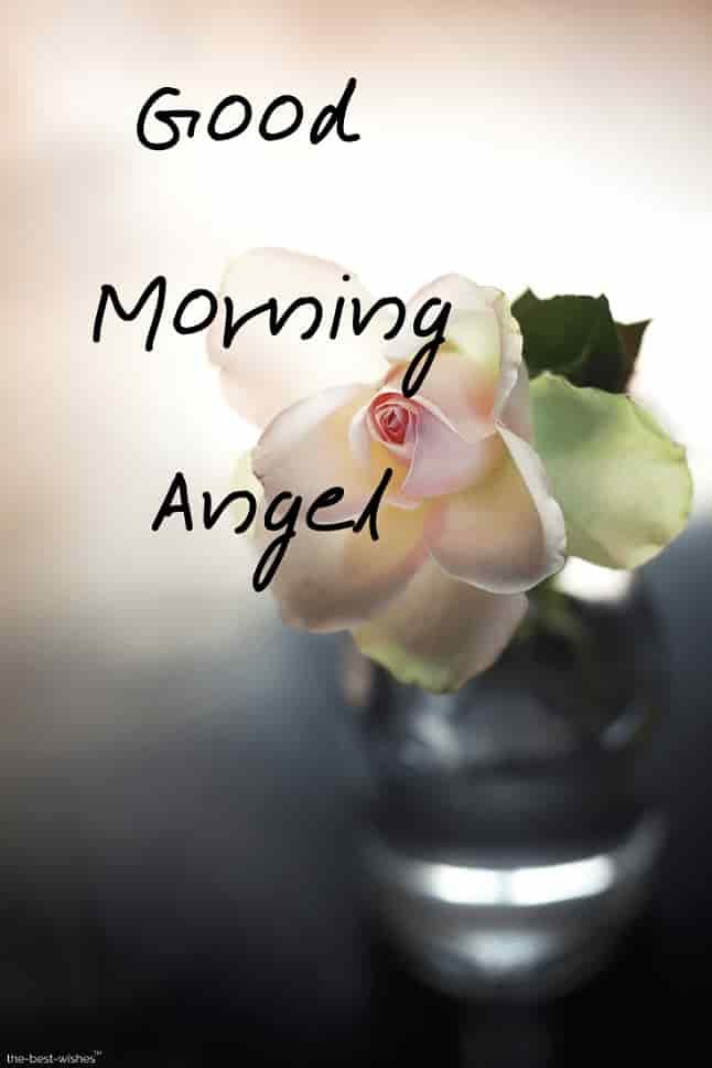 good morning angel hd images