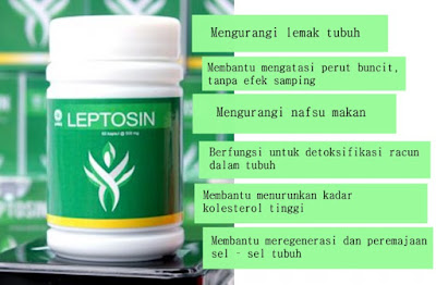 pelangsing herbal leptosin