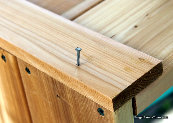 garden boxes DIY nailing together