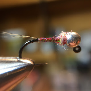 Fly Tying Egan's Rainbow Warrior