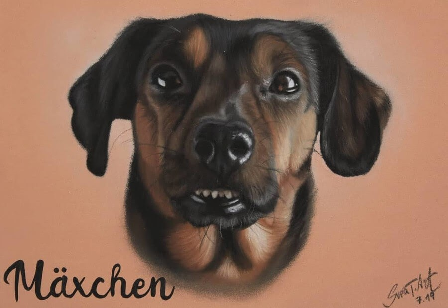 10-Maxchen-10-Svea-T-Animal-Portrait-Drawings-and-an-Eye-www-designstack-co